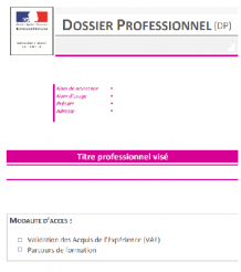 Dossier professionnel